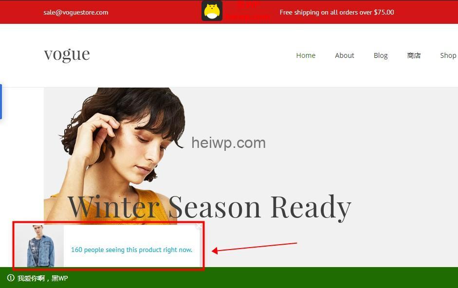 woostify Pro销售通知设置教程-黑WP