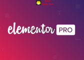 Elementor Pro 【3.0.1版本更新内容】免费下载-黑WP
