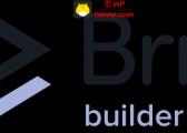 【官方正版Key】Brizy Pro 全新的WordPress无代码页面编辑器插件-永久授权激活密钥Key-黑WP