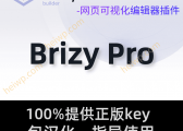 Brizy Pro【2.2.3版本更新内容】免费下载-黑WP