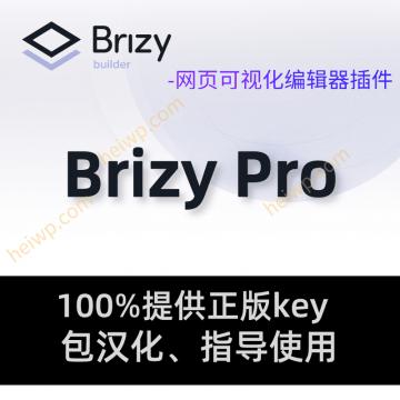 Brizy Pro -WordPress网页可视化编辑插件【官方正版Key】